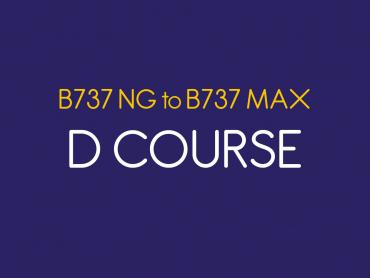 B737 NG to B737 MAX